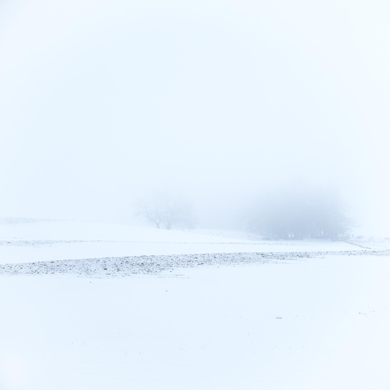 Christopher Swan-Whitespace-8.jpg