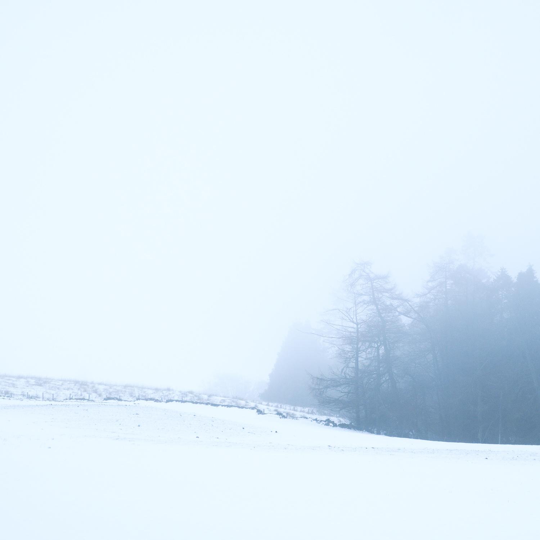 Christopher Swan-Whitespace-5.jpg