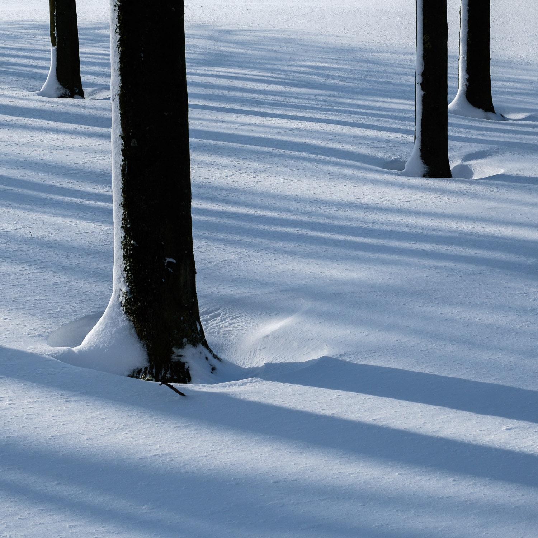 Christopher Swan-Glasgow Snow 2-6.jpg