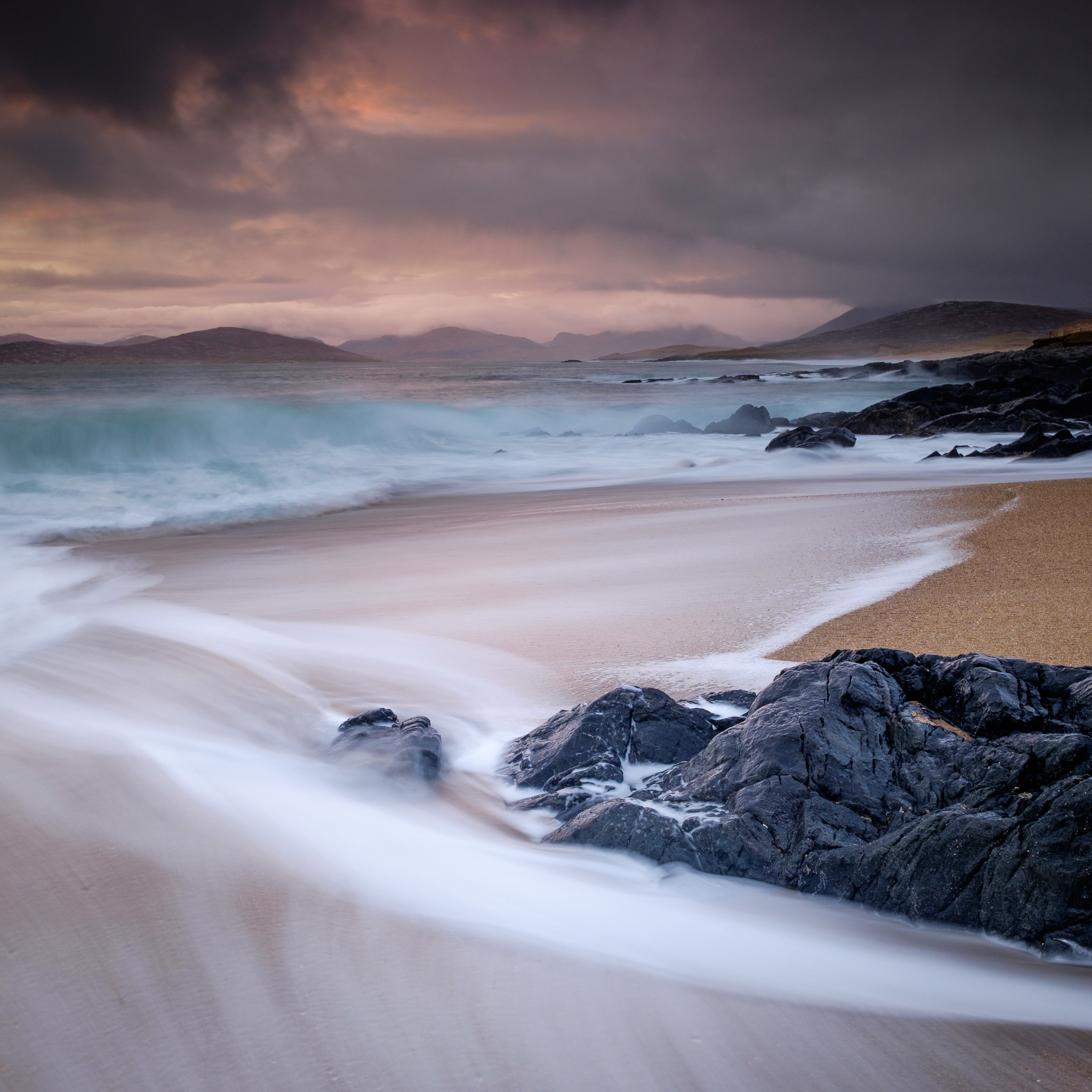 Harris in the Spring
