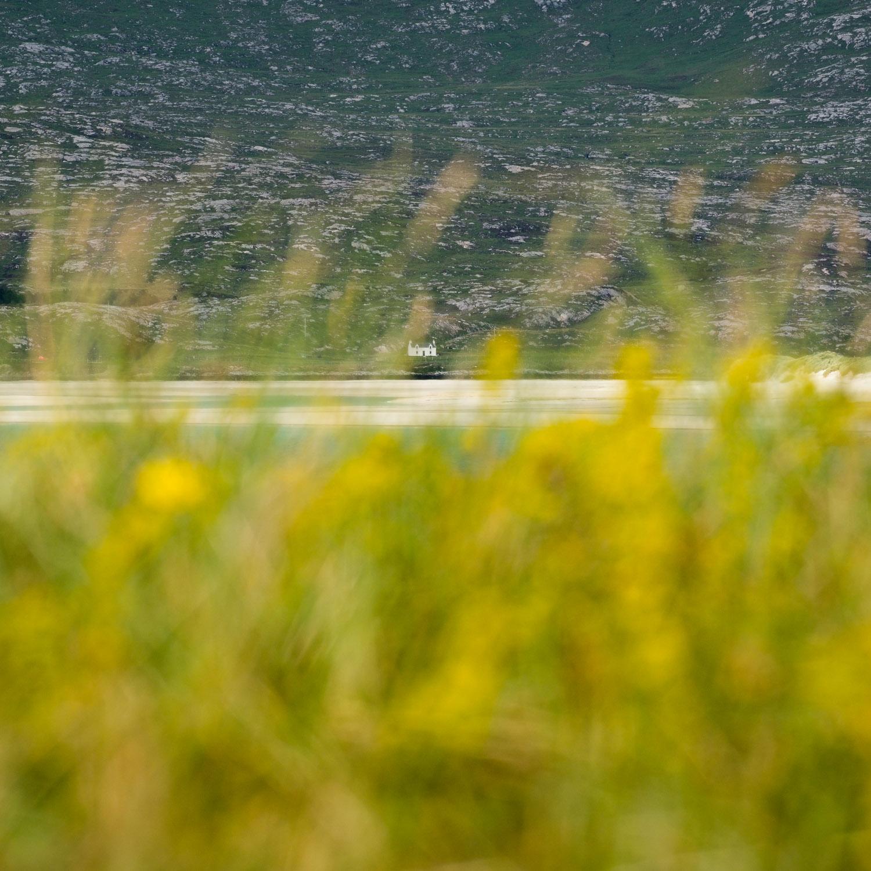 Christopher Swan Photography Harris Summer-7.jpg