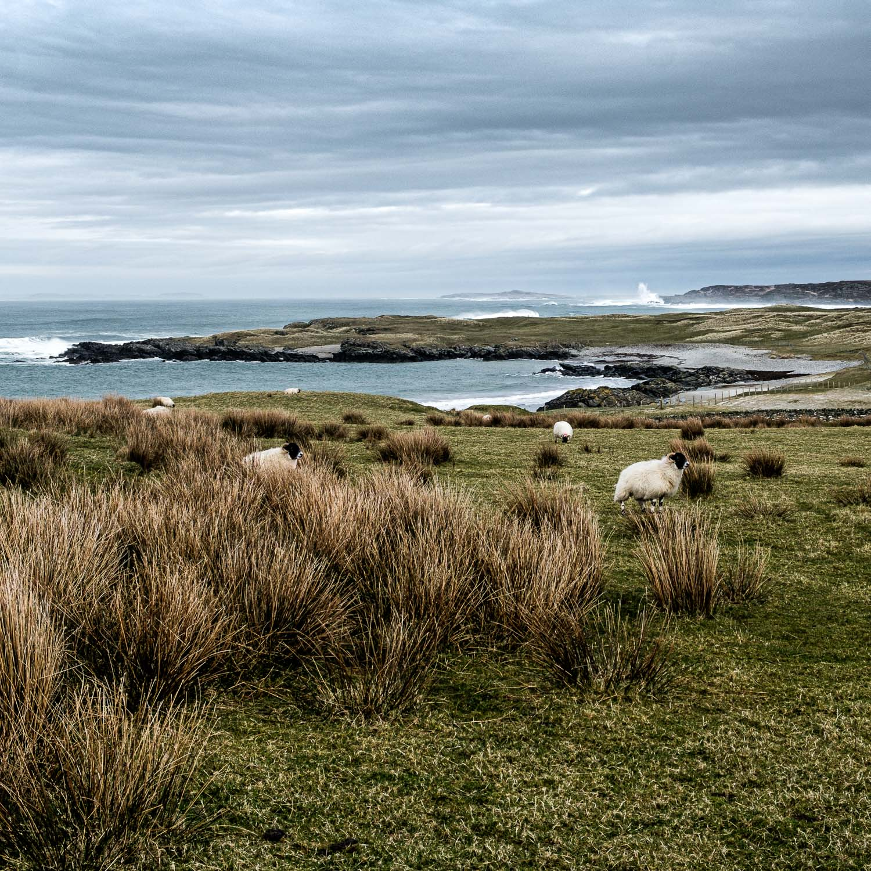 Christopher Swan Photography Blog Islay-12.jpg