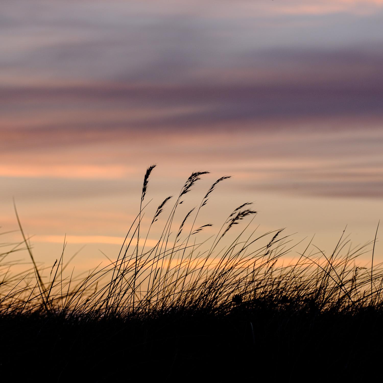 Christopher Swan Photography Blog - Tiree-40.jpg