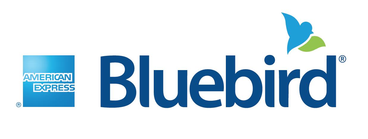 Bluebird logo lock-up