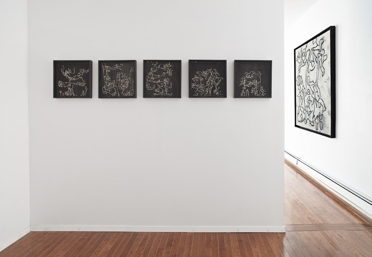 Installation view: Graham Wilson,  Remnants of Arcadia,  Peninsula Art Space, Brooklyn, NY, 2013