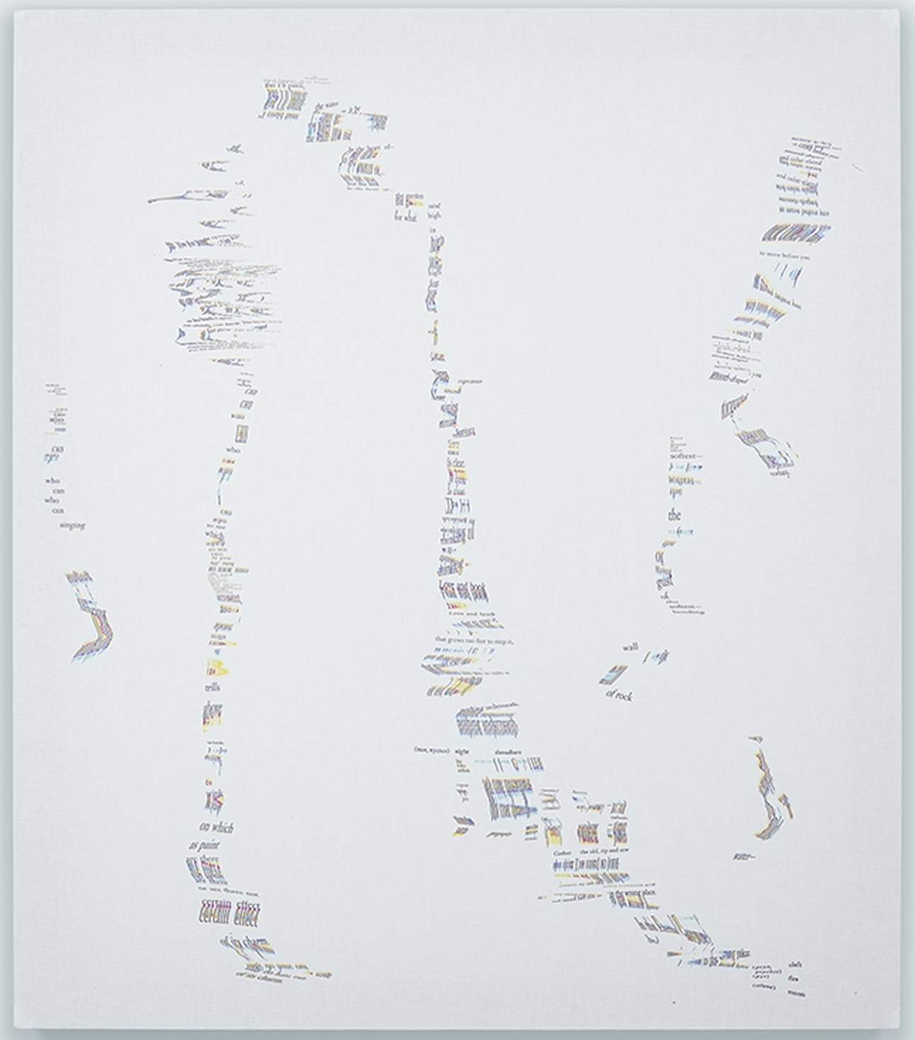 Oblique Archive III: Lorine Niedecker, The Loom of Language   2014   44 x 36 inches   Archival pigment print on canvas   FC004