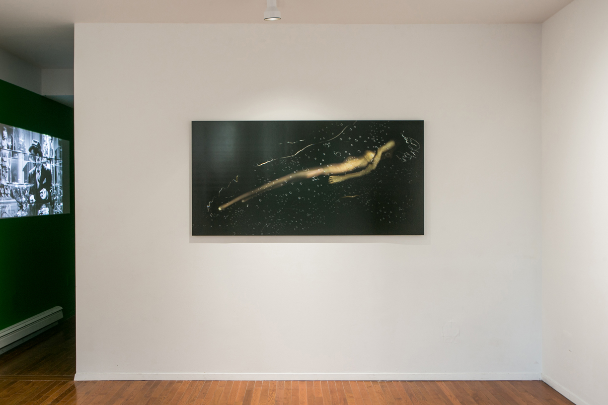 """James Reddington  """"…we chased her all the way down the Susquehanna!""""  2013-2014 Archival inkjet print 36 x 72 inches"""