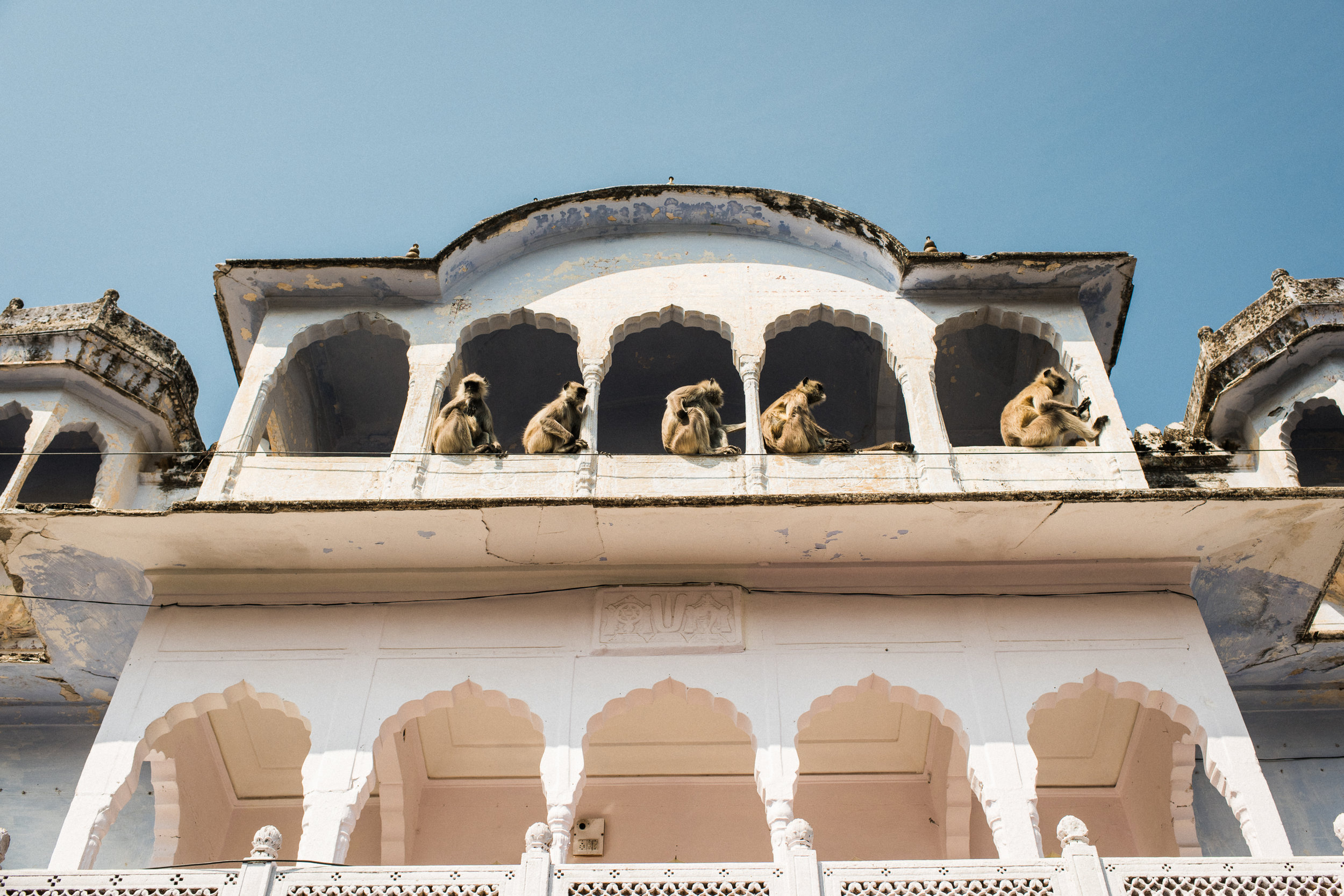 Pushkar_India_TaraShupe_Photography_022.jpg