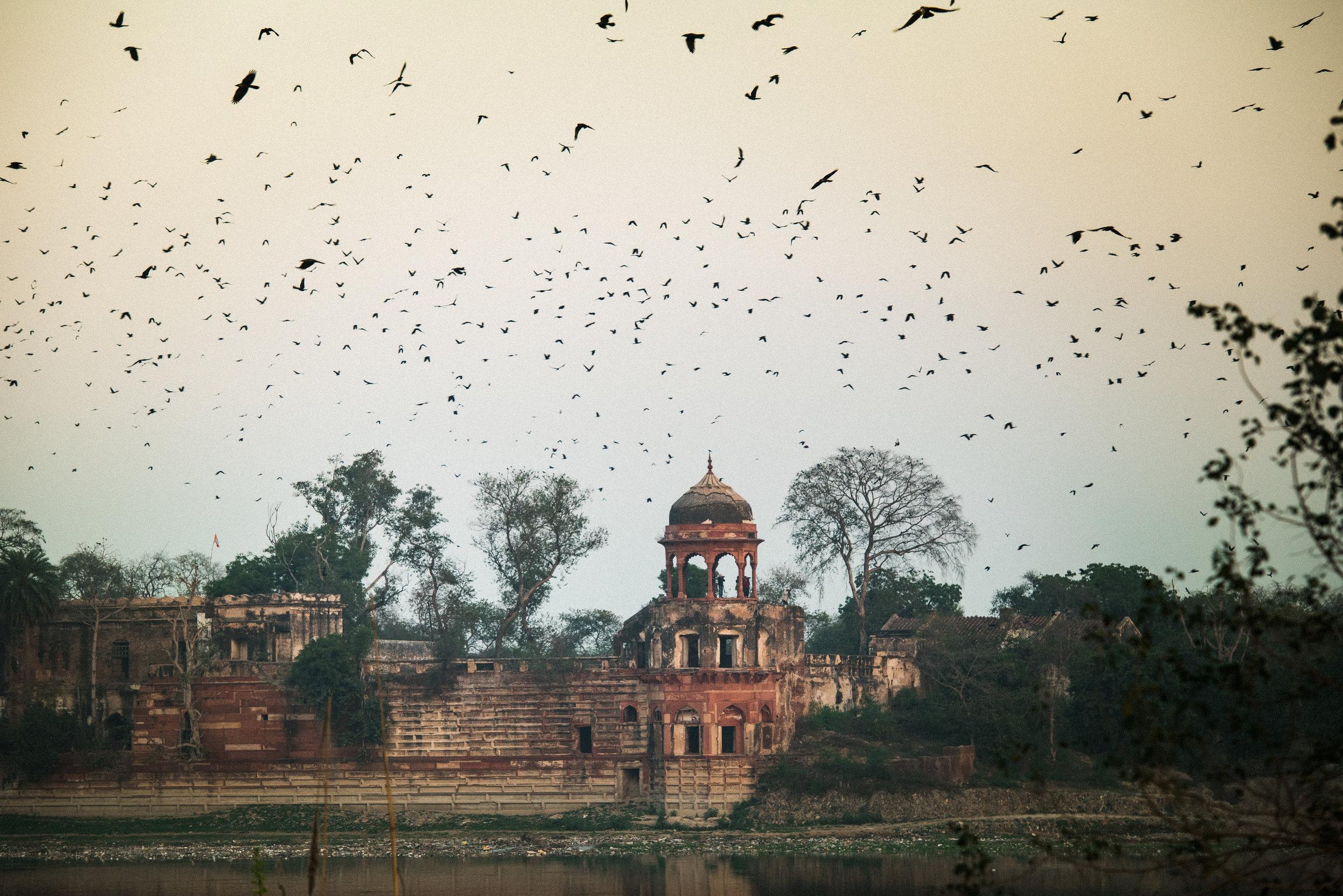 India_Humanitarian_Photography_DSC_7715.jpg
