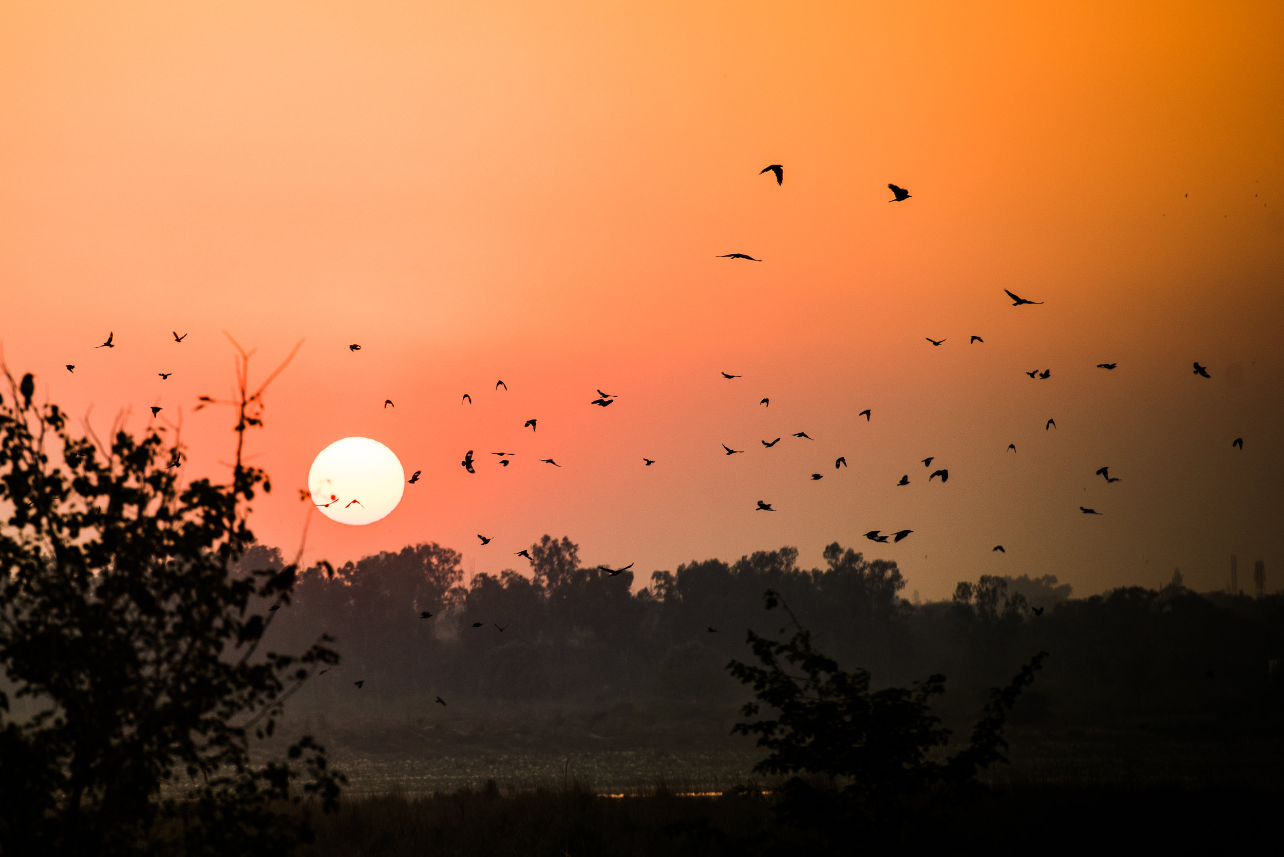 India_Humanitarian_Photography_DSC_7727.jpg
