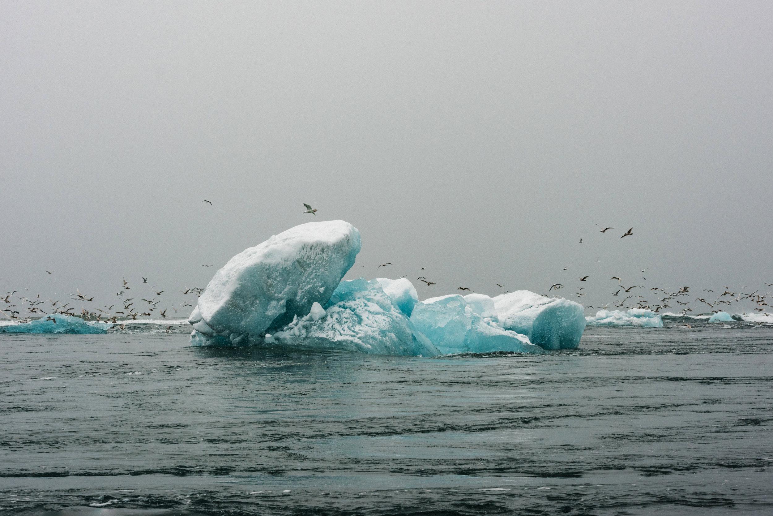 ICELAND_WOMAN_PHOTOGRAPHER_TARASHUPE_OUTDOOR_PHOTOGRAPHY_099.jpg