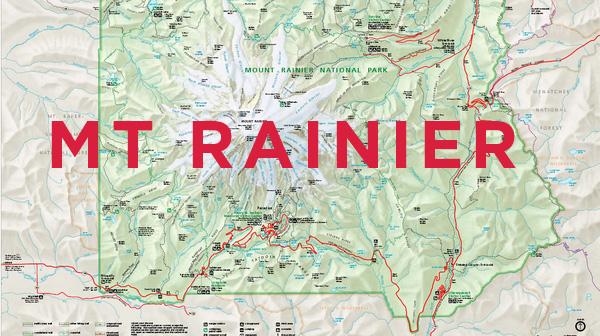 Summerfield Delight | Mt Rainier