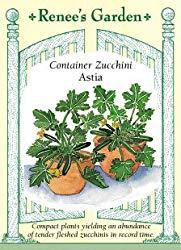 Container Zucchini