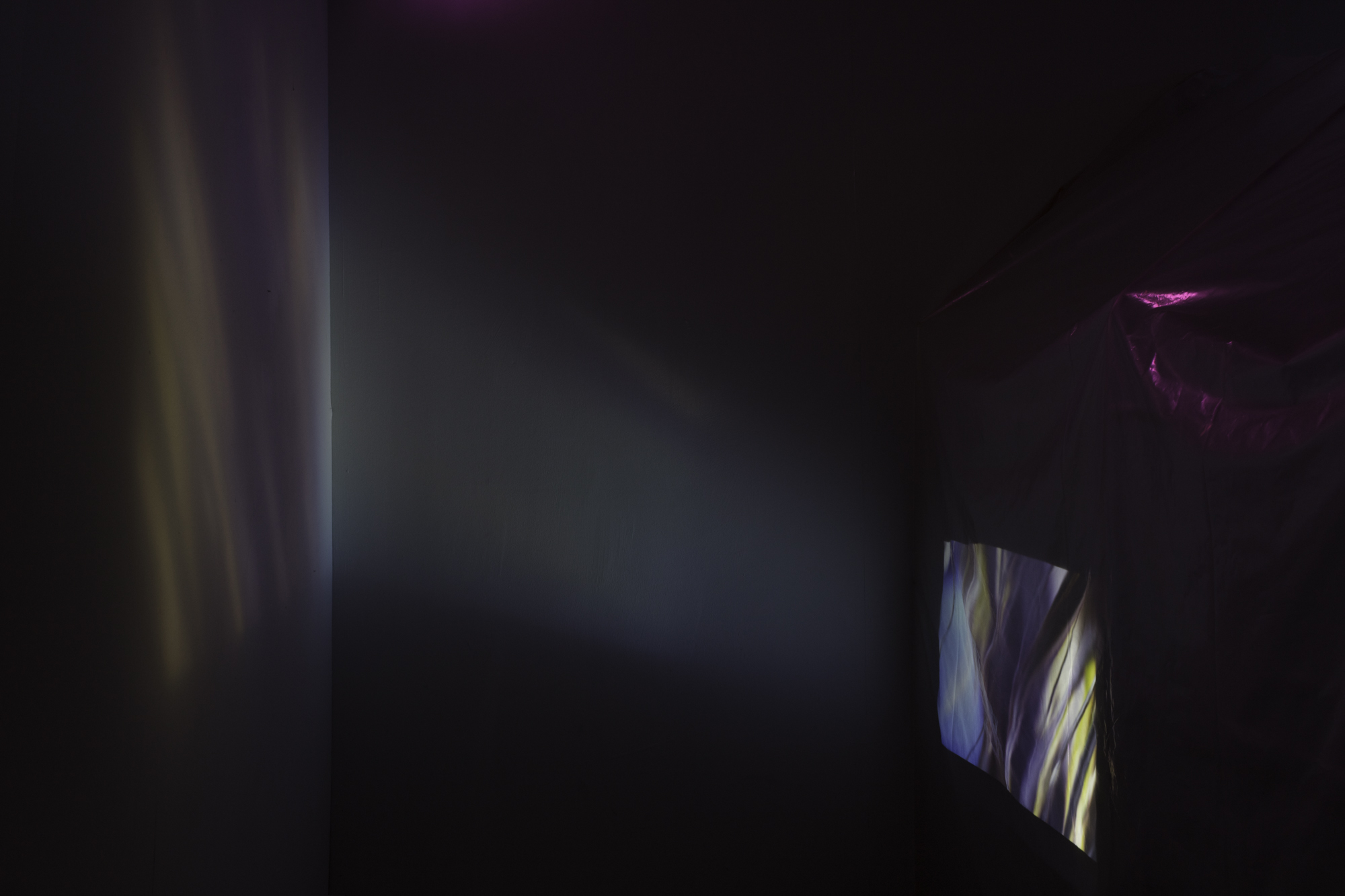 LC-web-int-02.jpg