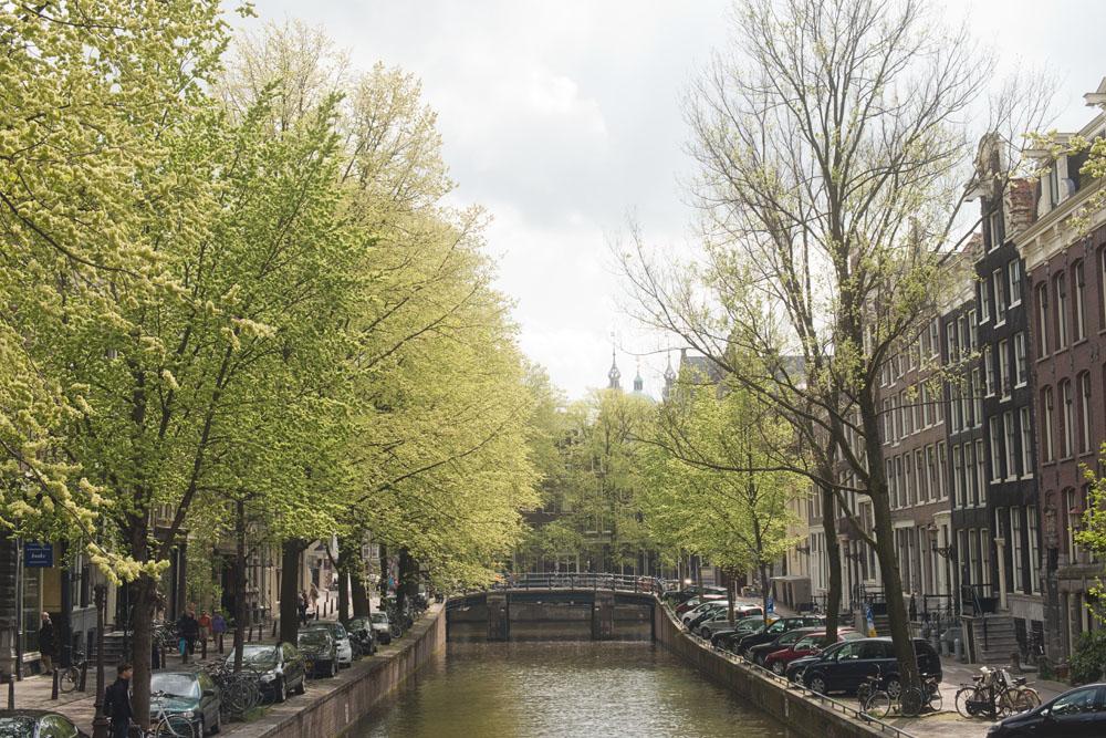 amsterdam canals_001.jpg