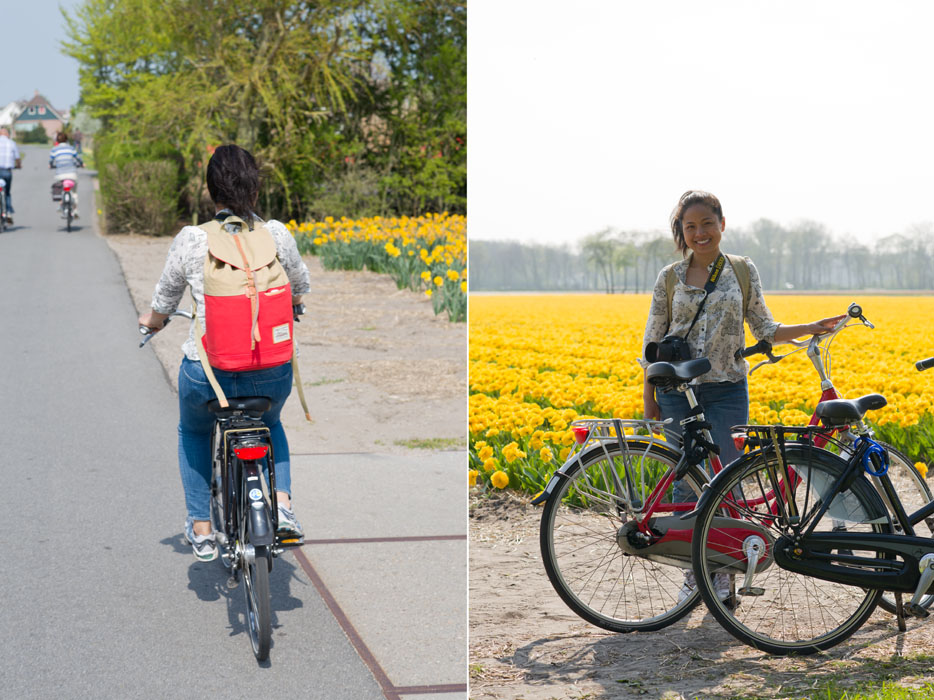 holland tulip fields_001.jpg