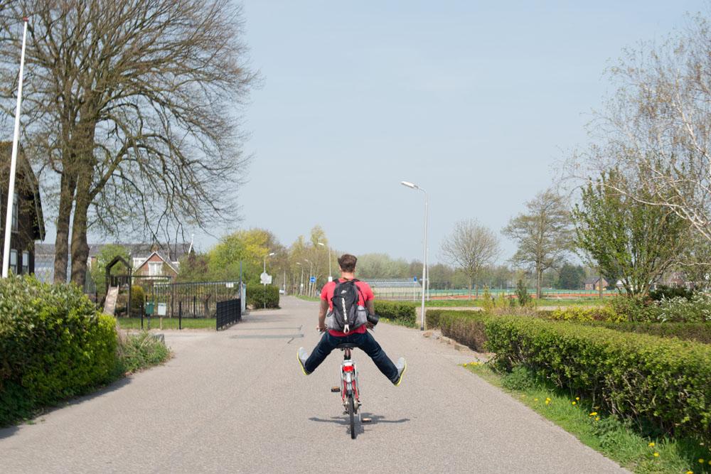 holland tulip fields_004.jpg