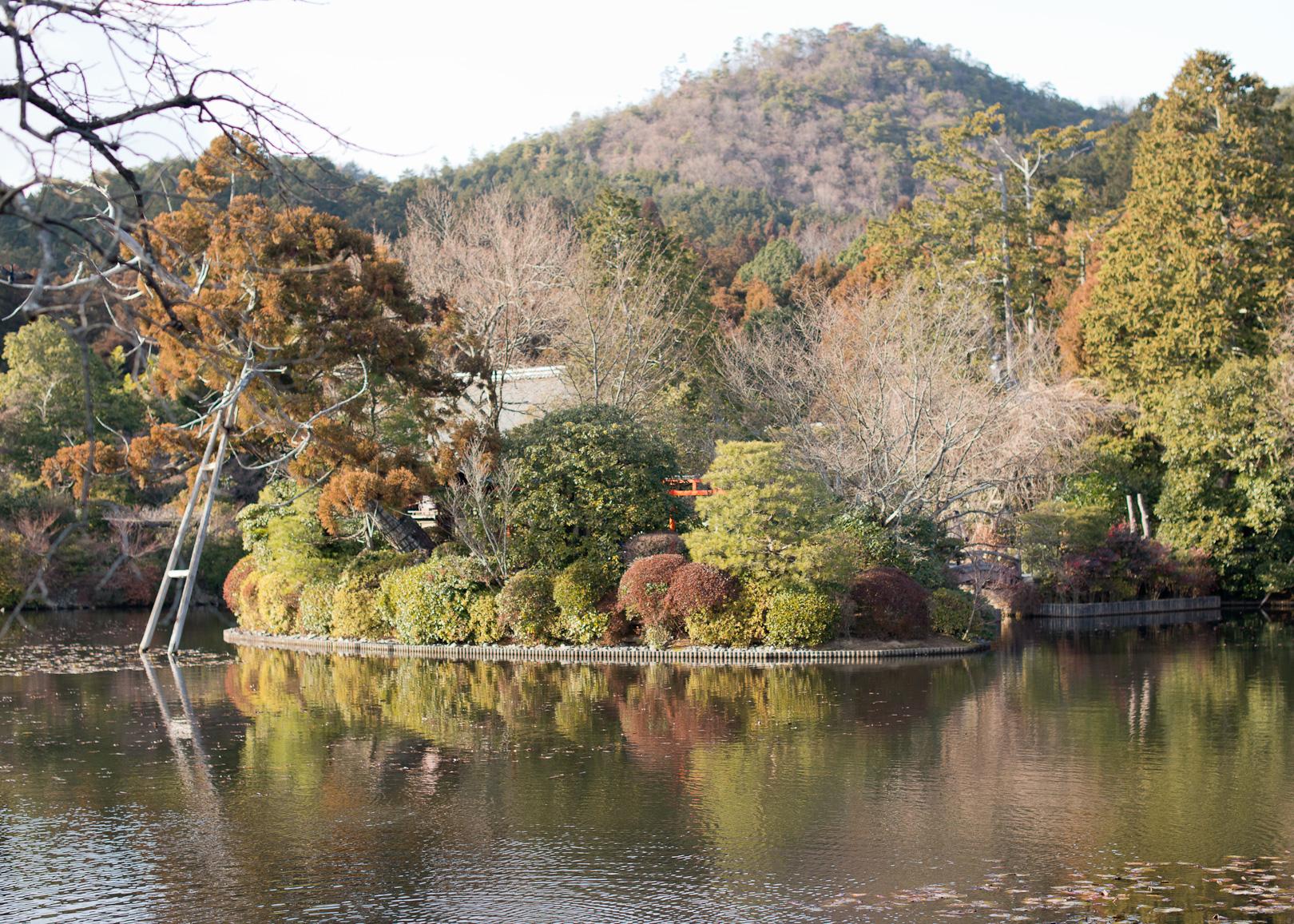 ryoanji_09.jpg