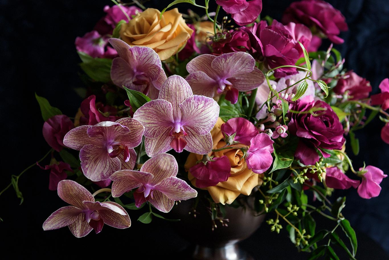 Orchids_008.jpg