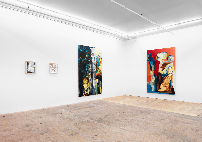 Installation View Johannes Vogt, New York, 2018.