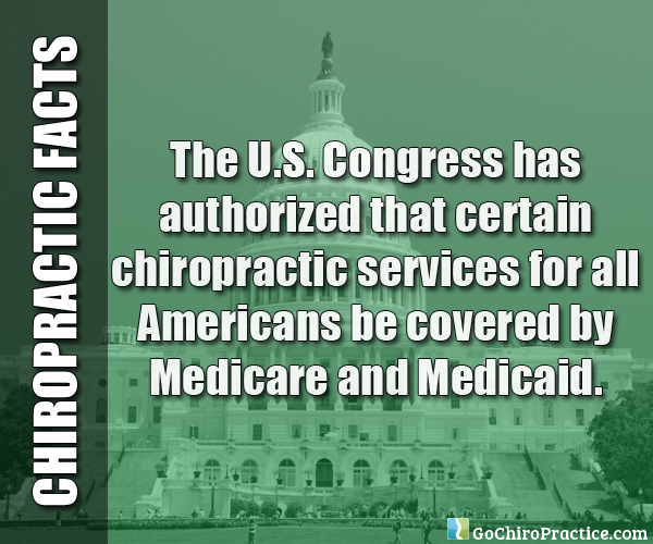 Facts-About-Chiropractic-Care-3.jpg