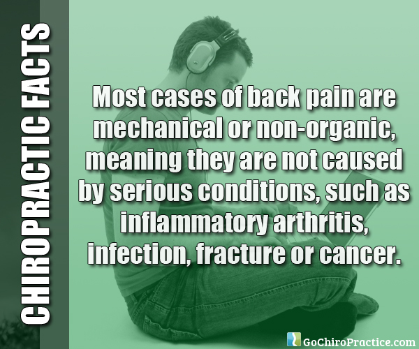 Facts-About-Chiropractic-Care-8.jpg