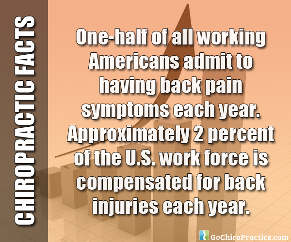 Facts-About-Chiropractic-Care-12.jpg