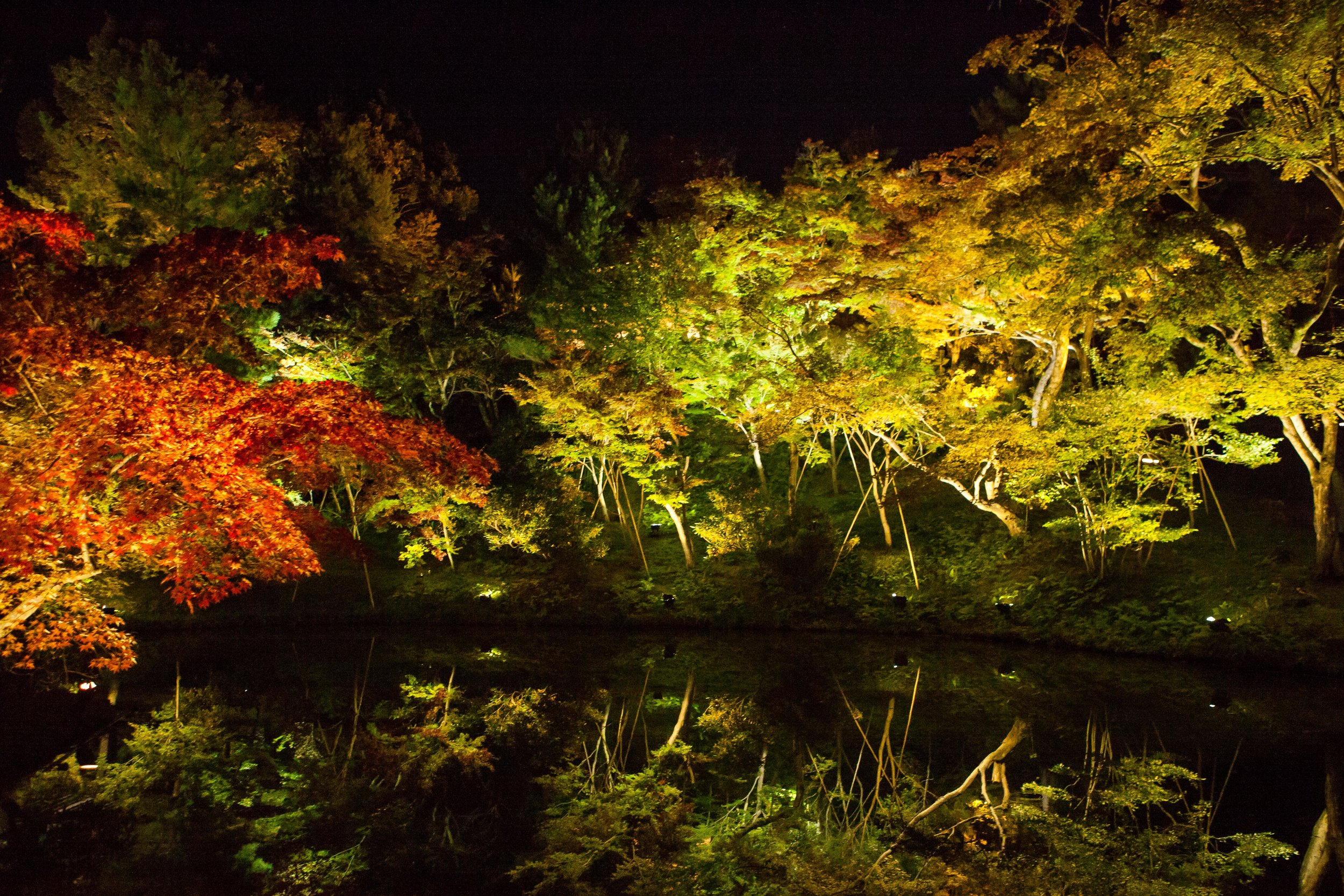 2016-10-23 Asia Trip_Japan-48.jpg