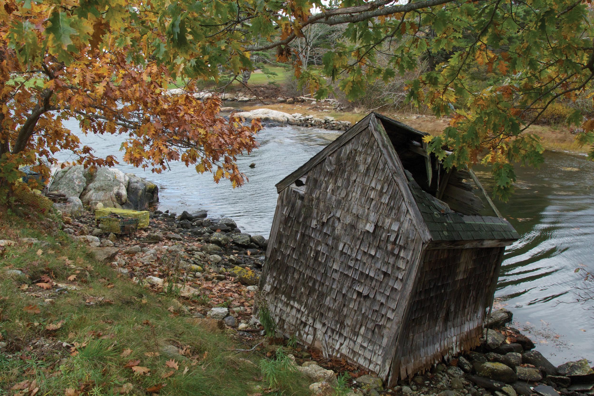 November   Barter's Island