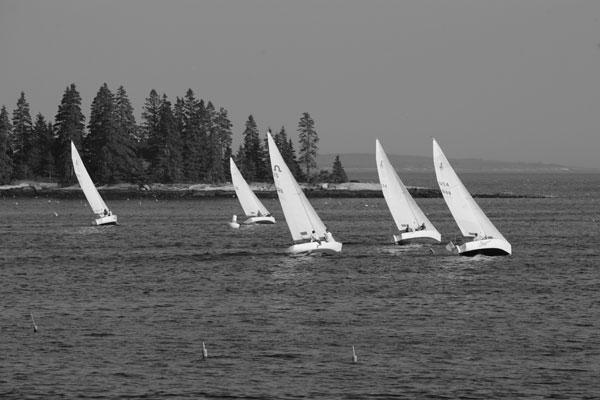 Harbor Racing