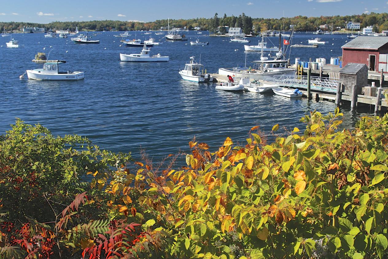 November: Boothbay Harbor