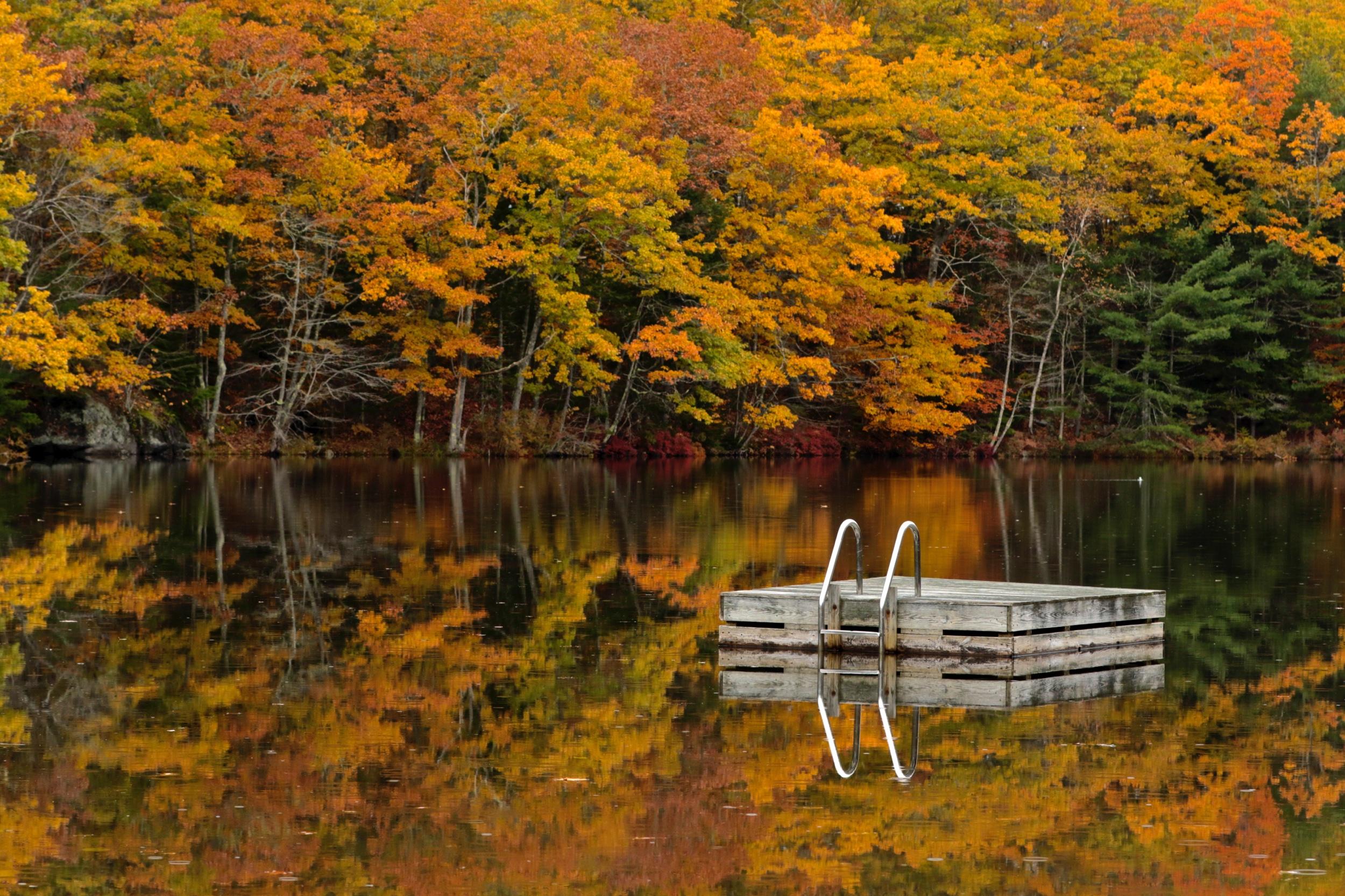 November: Knickerbocker Lake