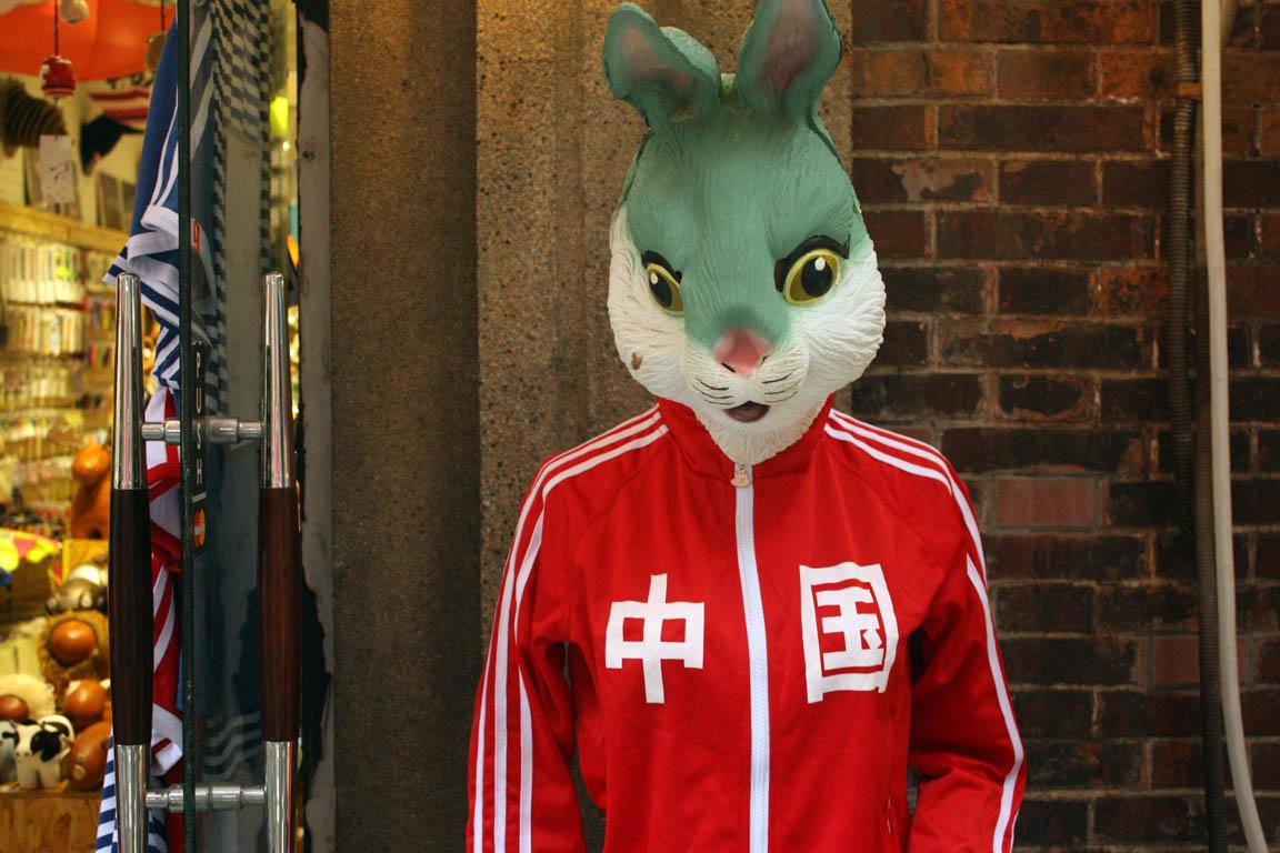 Rubber-Bunny-China.jpg