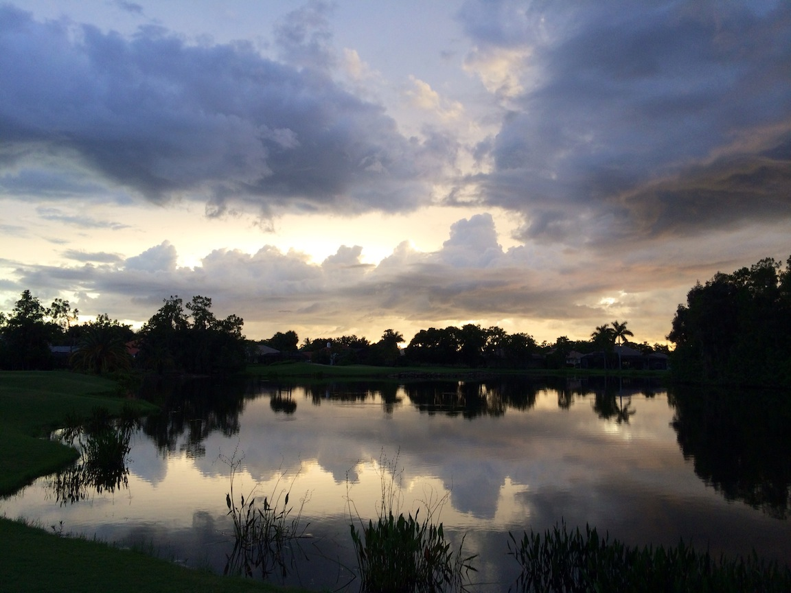 Lake, Estero, FL / Photo credit:  Susannah Breslin