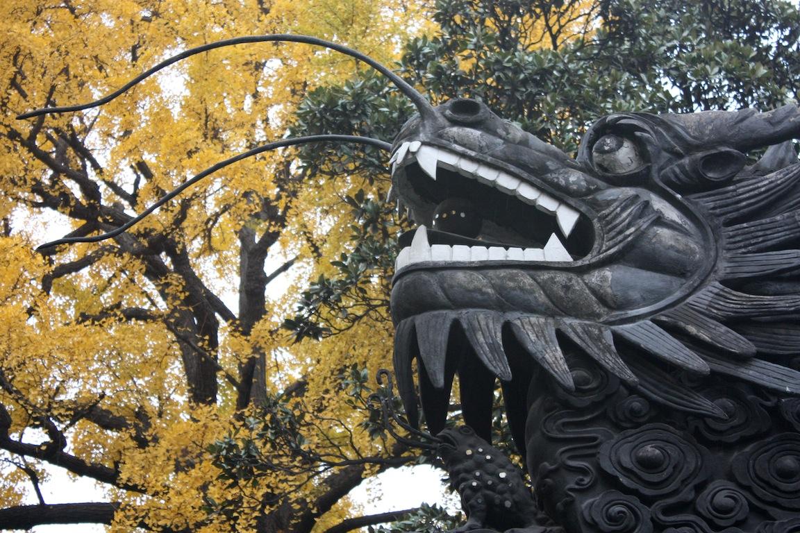 Dragon, Shanghai, China / Photo credit:  Susannah Breslin