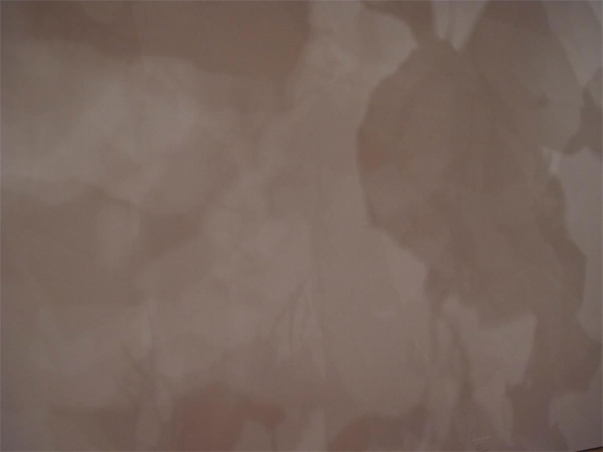 nbackshadow.jpg