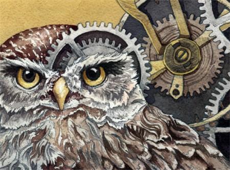 The Little Owl Detail 1