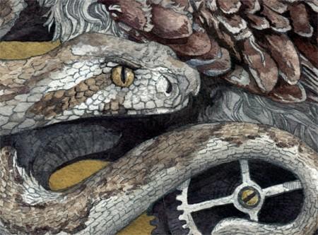 The Little Owl Detail 3