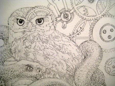 The Little Owl Process 1