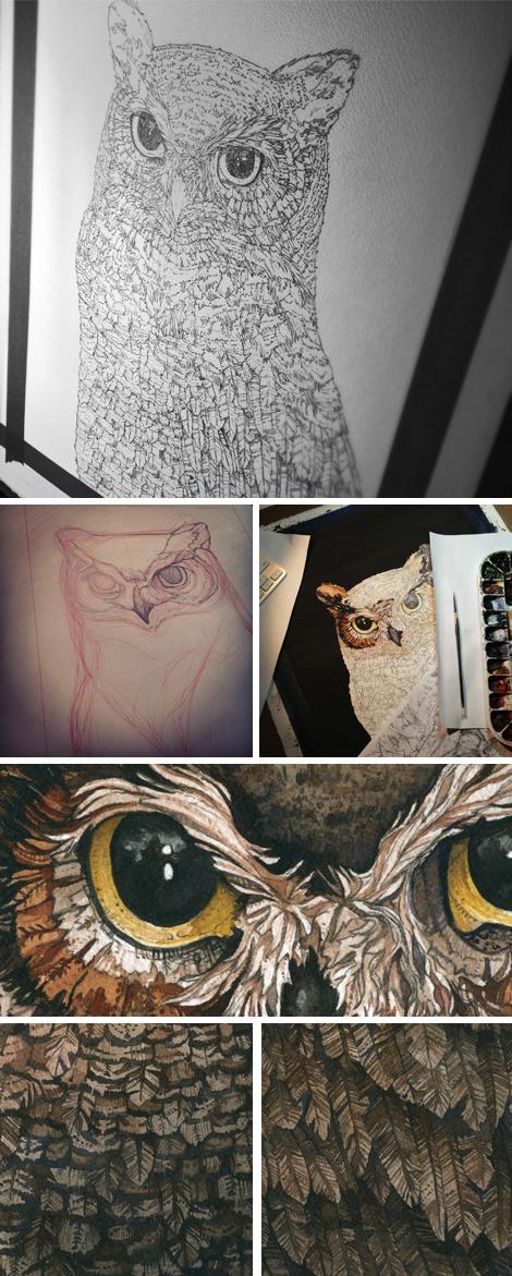 Owl_Website_Blog