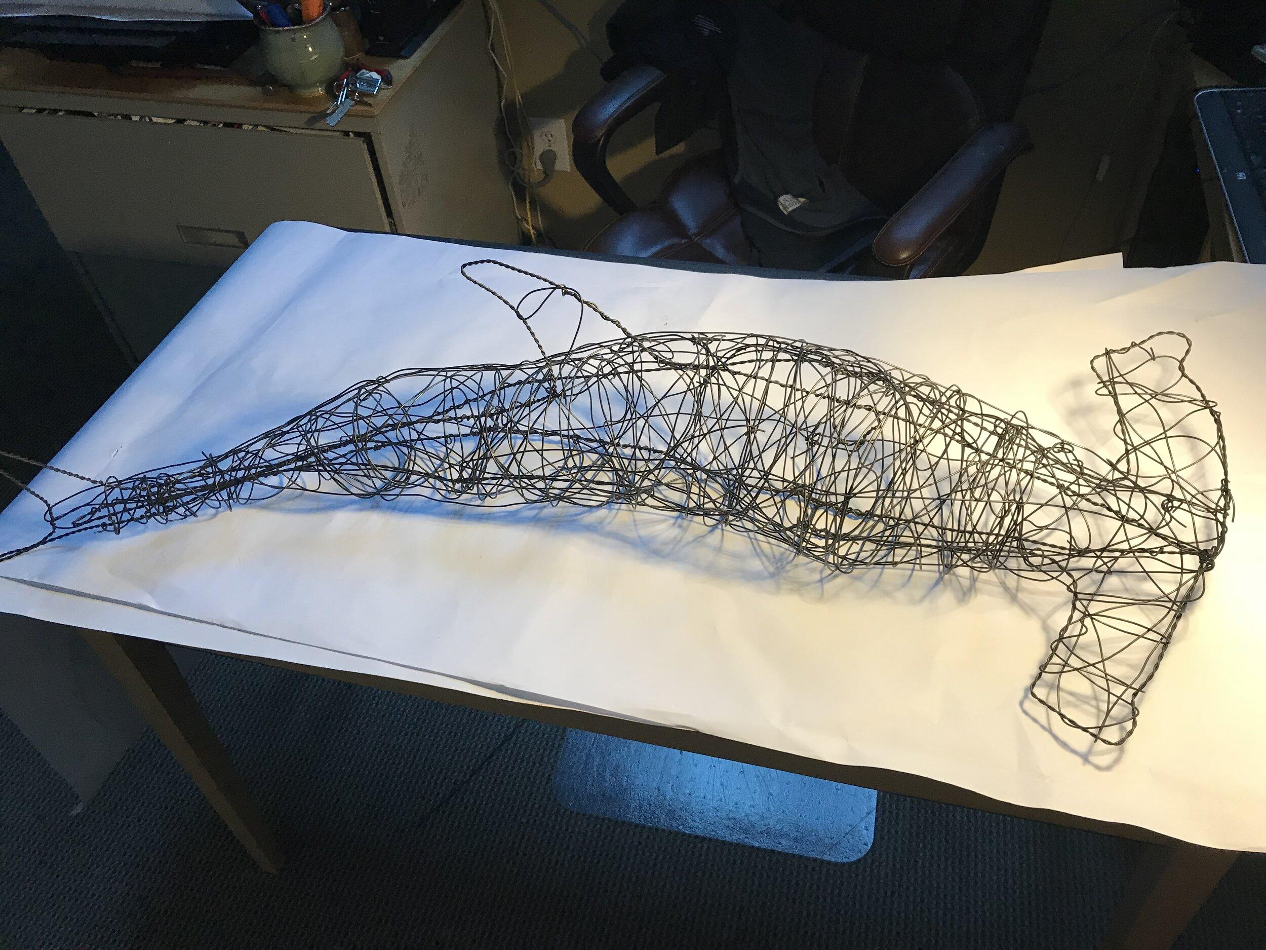shark1b.jpg