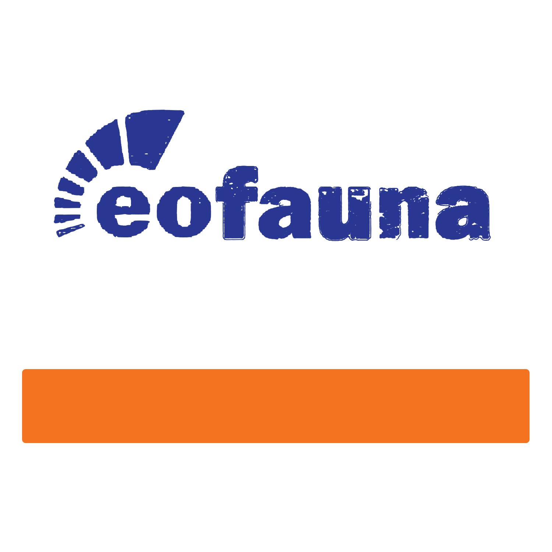 Eofauna.jpg