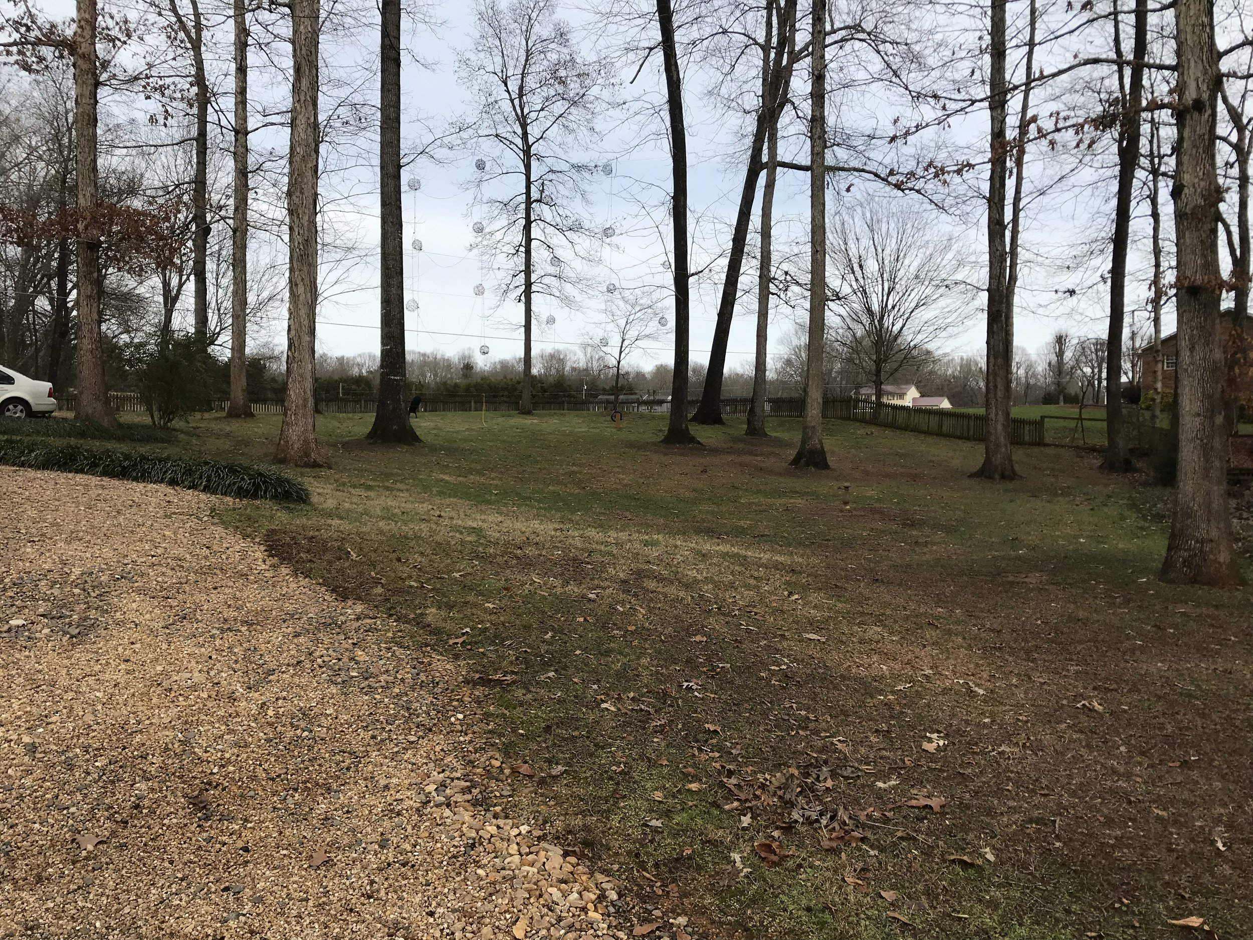 This is photo 6. Looking at the side yard, a more gradual slope down to lot 47 from the front of the property.