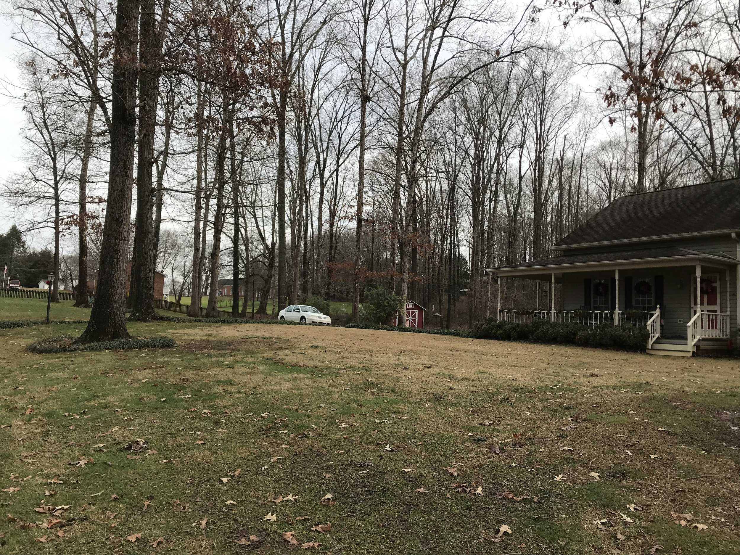 This is photo 16. Looking back towards the driveway from the northwest corner of the front yard.