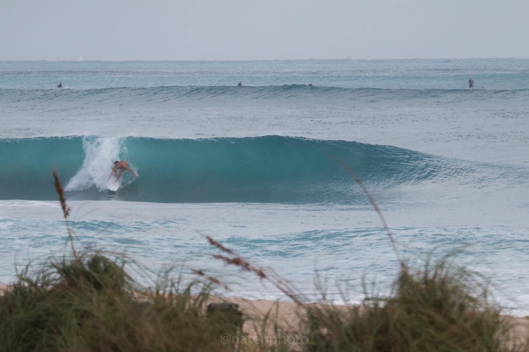 JanuarySwell_ReefRoad_Florida_natehphoto-4156.jpg