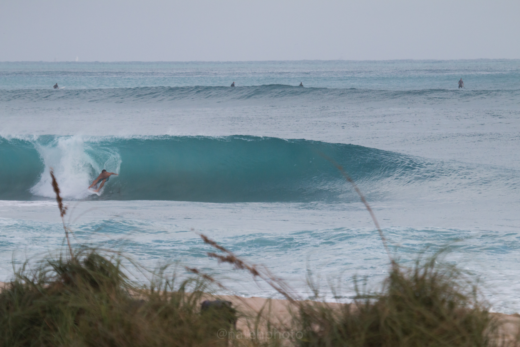 JanuarySwell_ReefRoad_Florida_natehphoto-4158.jpg