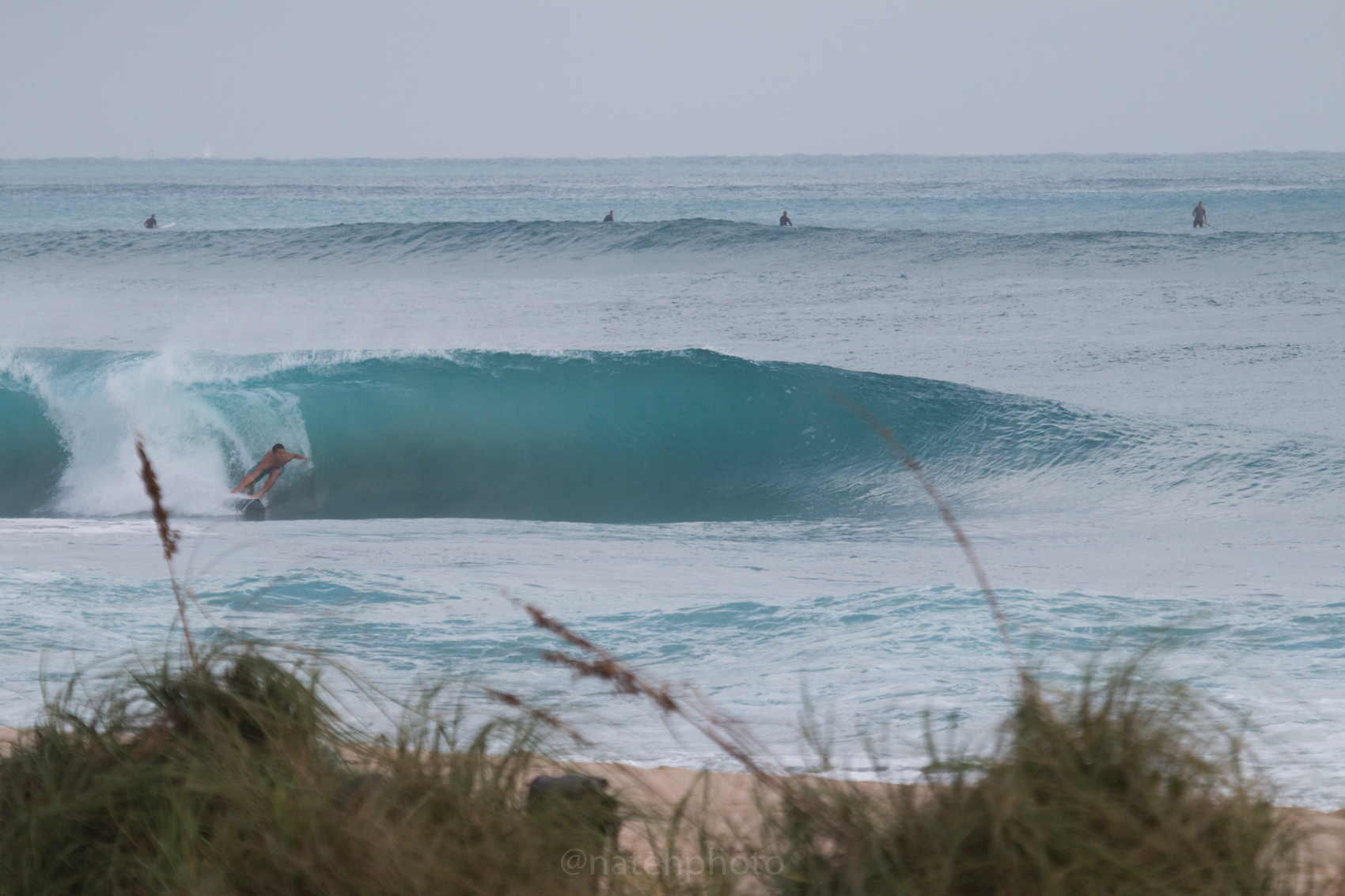 JanuarySwell_ReefRoad_Florida_natehphoto-4159.jpg