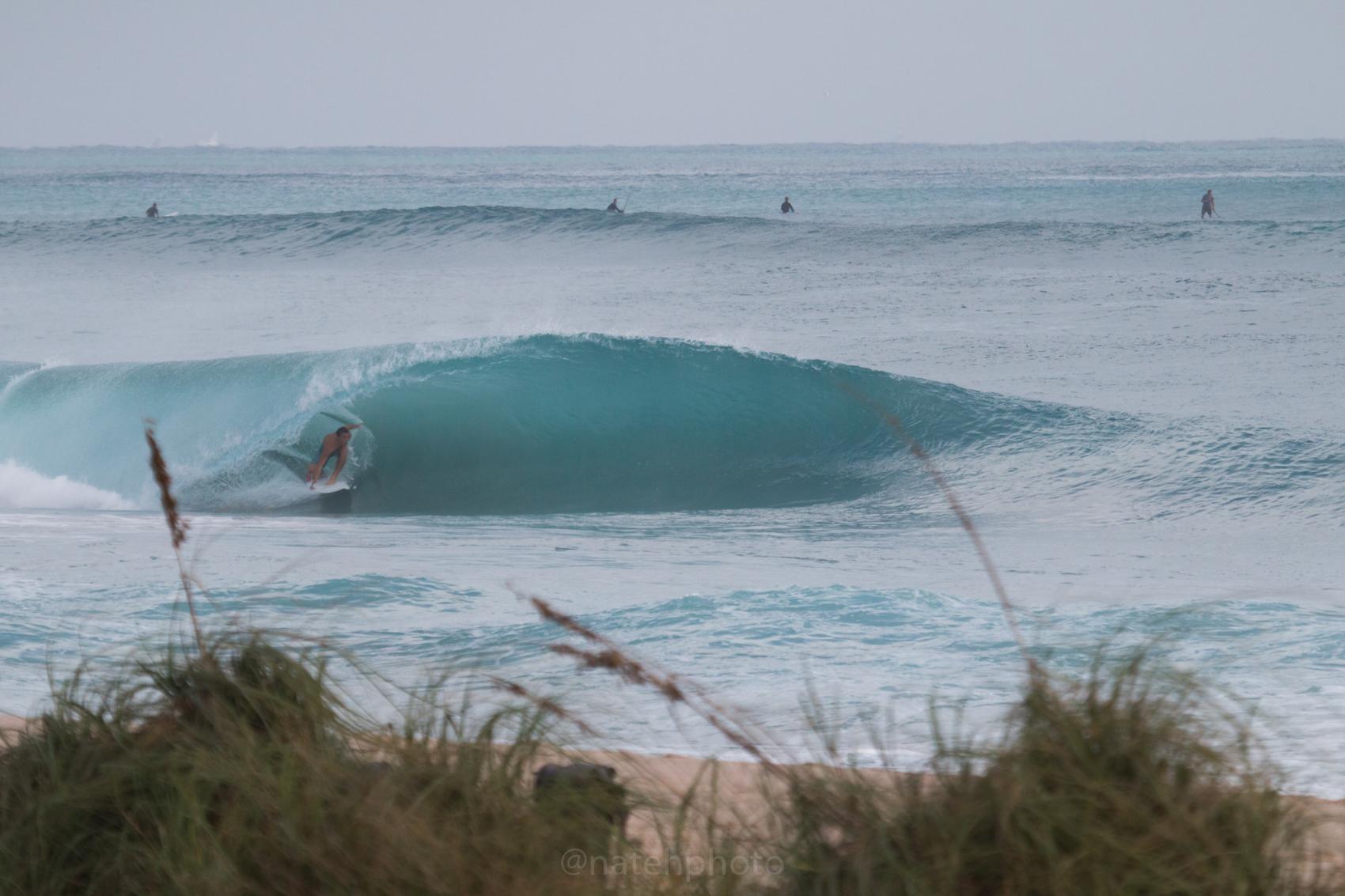 JanuarySwell_ReefRoad_Florida_natehphoto-4163.jpg
