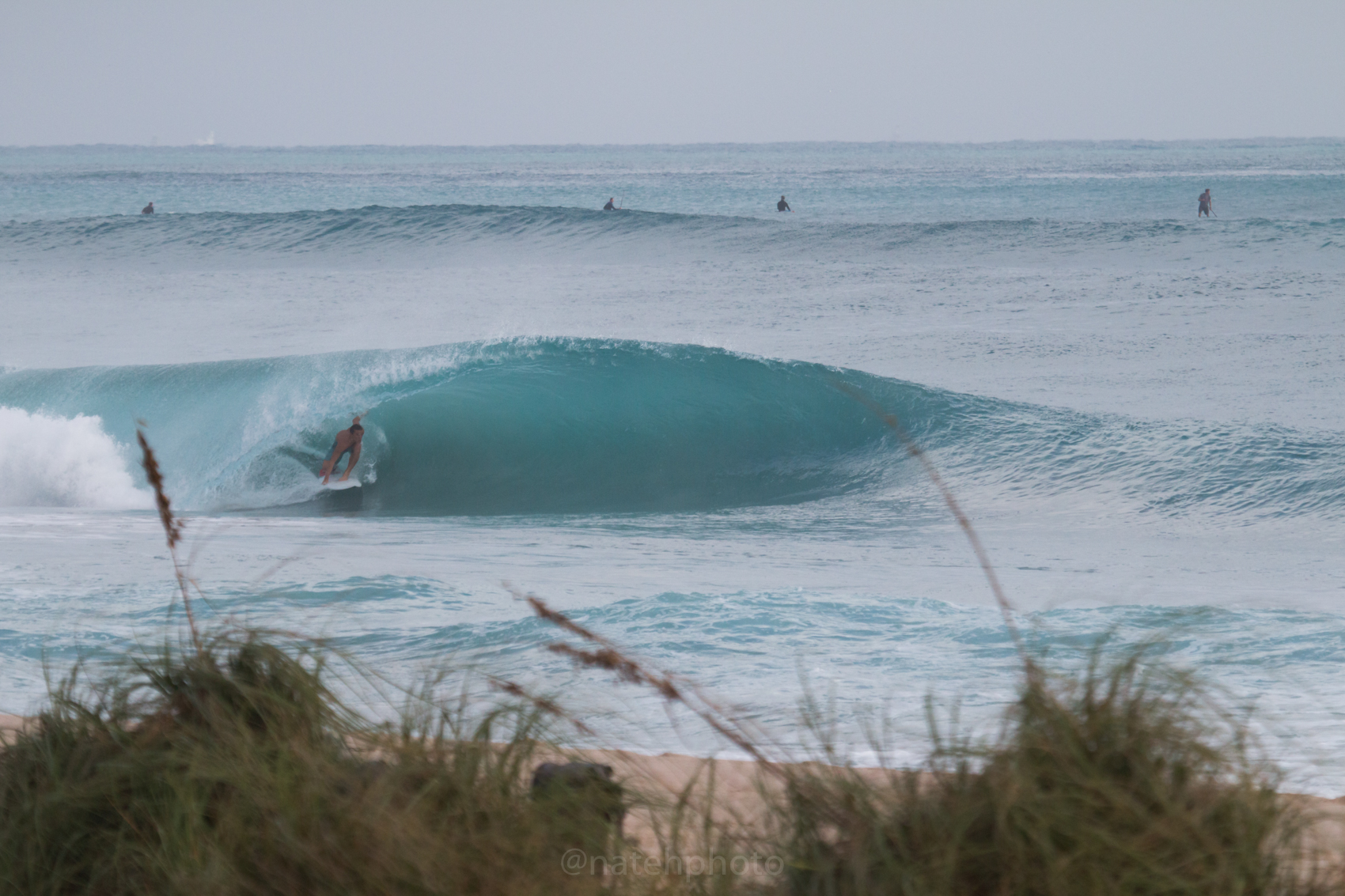 JanuarySwell_ReefRoad_Florida_natehphoto-4164.jpg