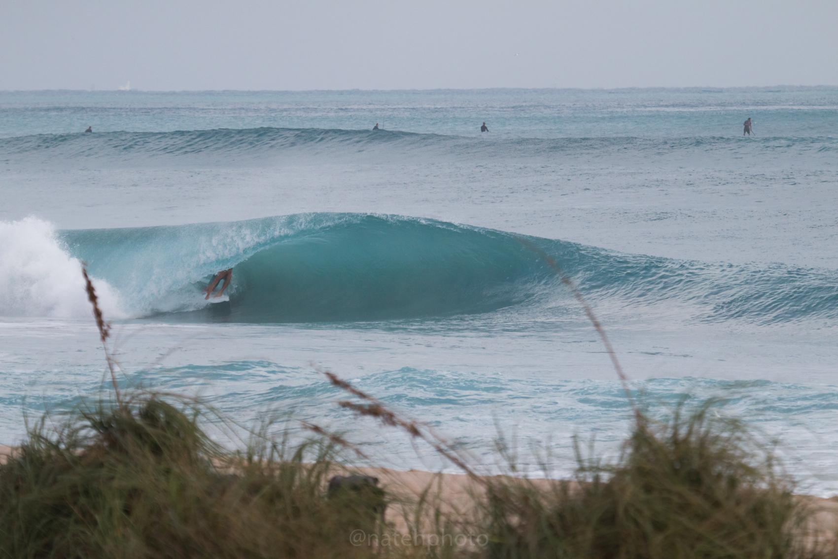 JanuarySwell_ReefRoad_Florida_natehphoto-4165.jpg